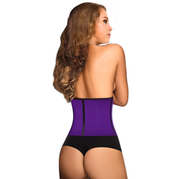 3 Hooks Latex Waist Cincher Steel Boned Corsets Purple HP1104