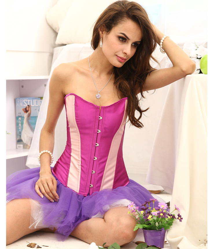 Classic Purple Corset With Pink Stripe HP5375